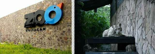 leyenda del zoo en culiacan