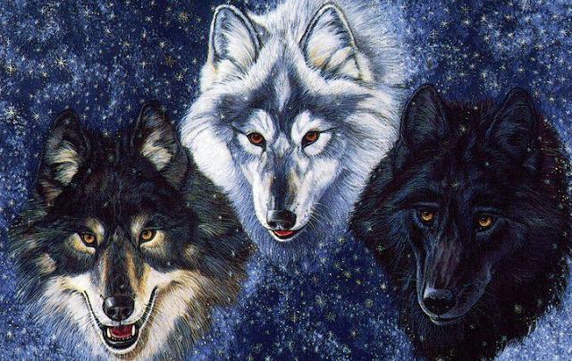 leyenda de lobos mexicanos