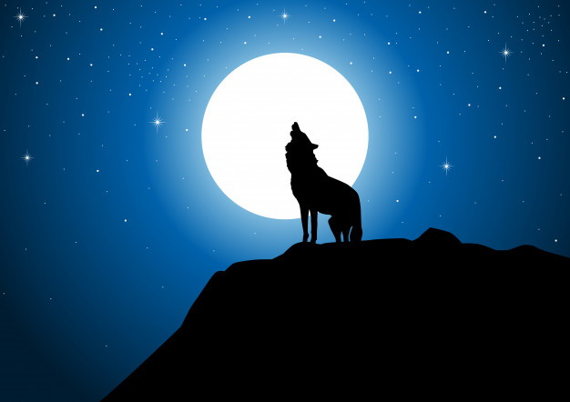 luna llena lobo aullando