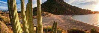 Leyendas de Sonora