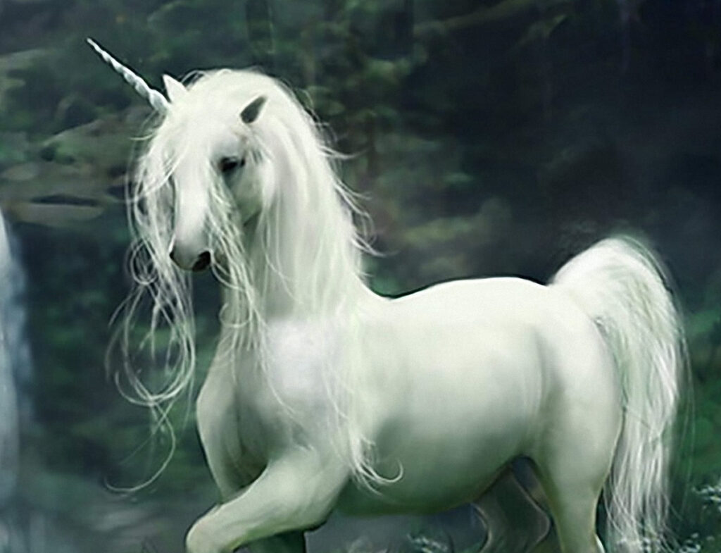 todo sobre la leyenda de los unicornios